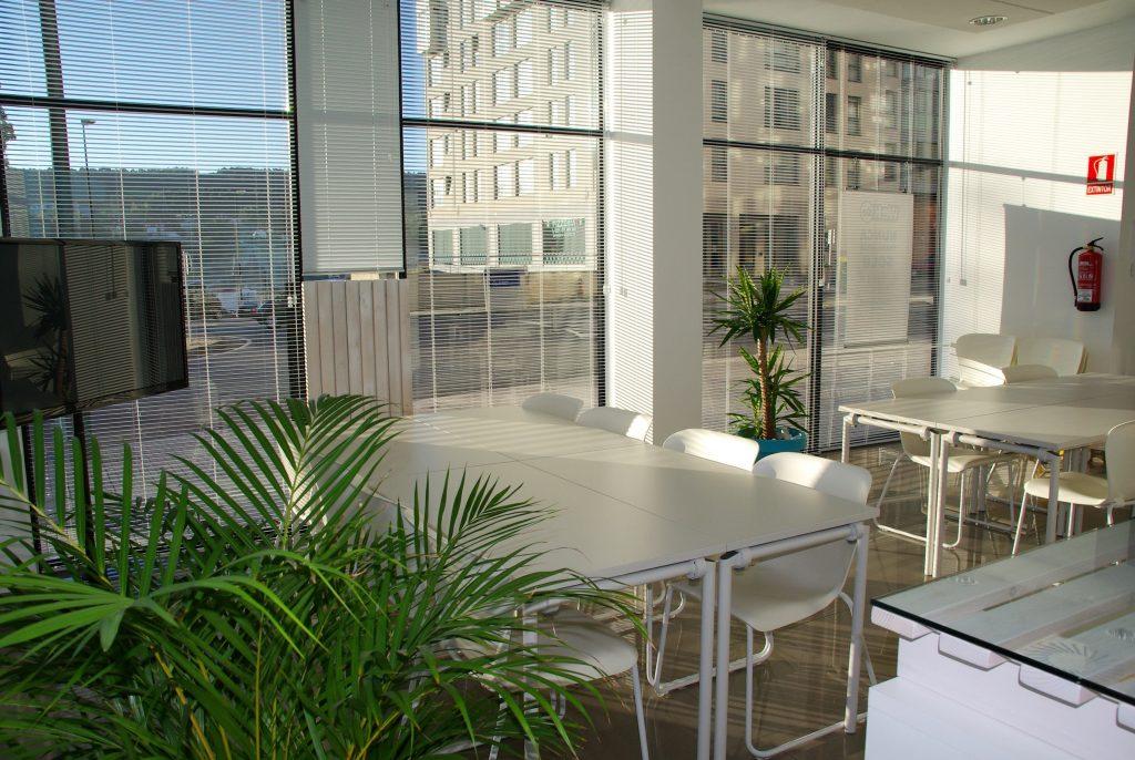 Košček narave v vaši pisarni