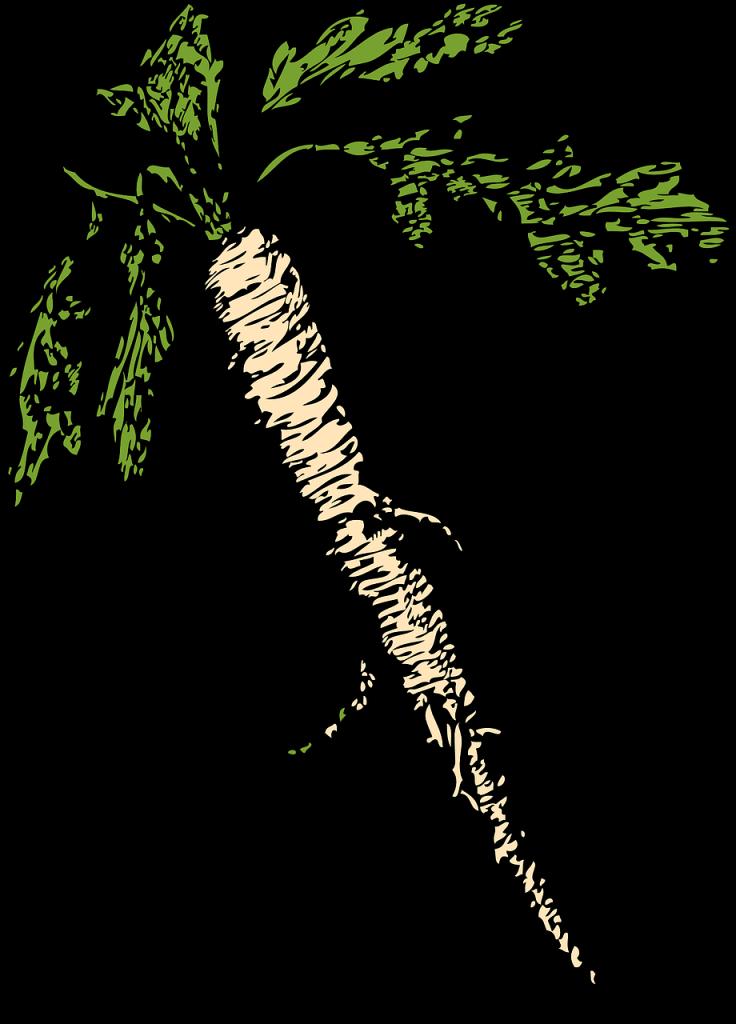 Hren – čudežna ostra korenina